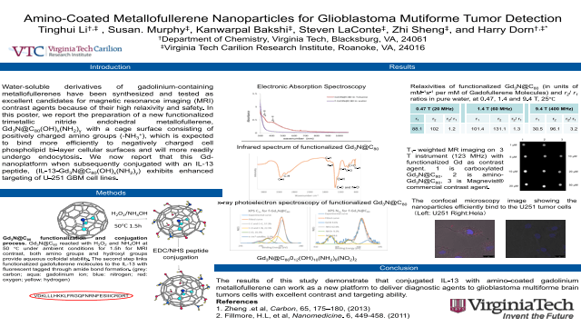 Amino-Coated Metallofullerene Nanoparticles for Glioblastoma Mutiforme Tumor Detection