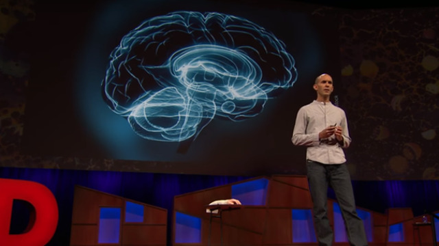 Anil Seth Explains How Your Brain Hallucinates Consciousness