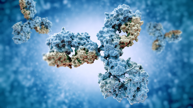 Antibodies in Drug Discovery: Identifying Novel Biomarkers to Overcome Sjögren's Syndrome