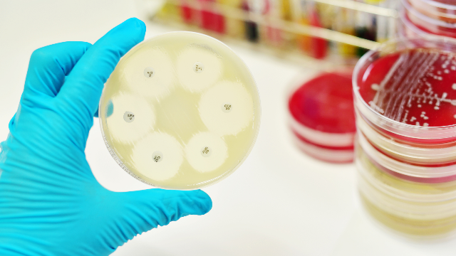 Antimicrobial Resistance – the Rise of Global Superbugs