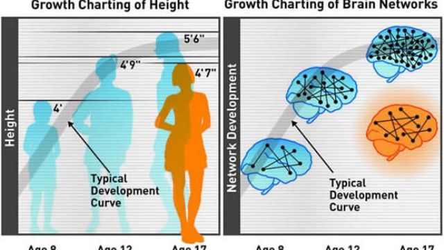 "Could a brain ""growth chart"" spot attention problems early? New study suggests so"