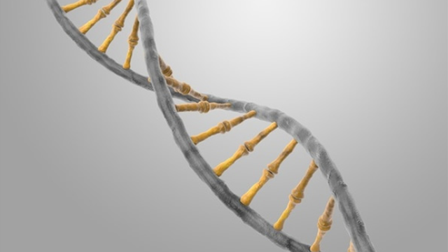 Four new genetic diseases defined within schizophrenia