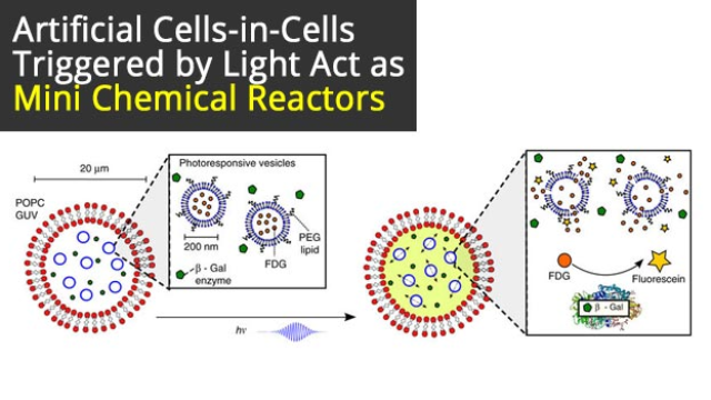Artificial Cells-in-Cells Triggered by Light Act as Mini Chemical Reactors