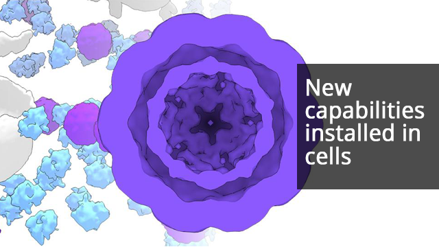 Artificial Cellular Compartments Built