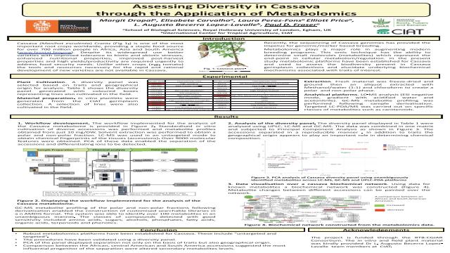 Assessing Diversity in Cassava through the Application of Metabolomics