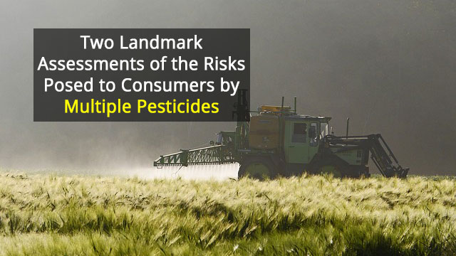 Assessing Pesticide Risk in Food