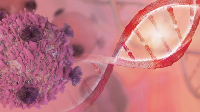 Atlas of Genes Helps Identify New Treatment Targets in Breast Cancer