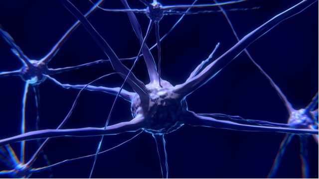 b cells linked to brain lesions in ms sufferers technology networks