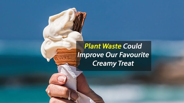 Banana Plant Waste Improves Ice Cream