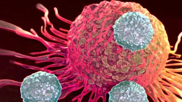 Bi-specific Antibodies Lure Immune Killers Directly to Cancer Cells
