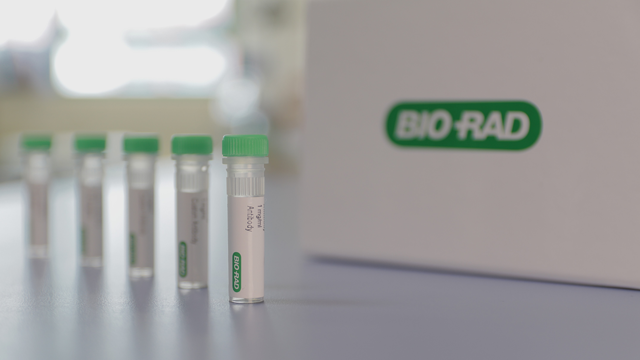 Bio-Rad Introduces Anti-Vedolizumab Antibodies