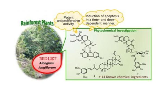 Bioactive Compounds from Endangered Tropical Plants