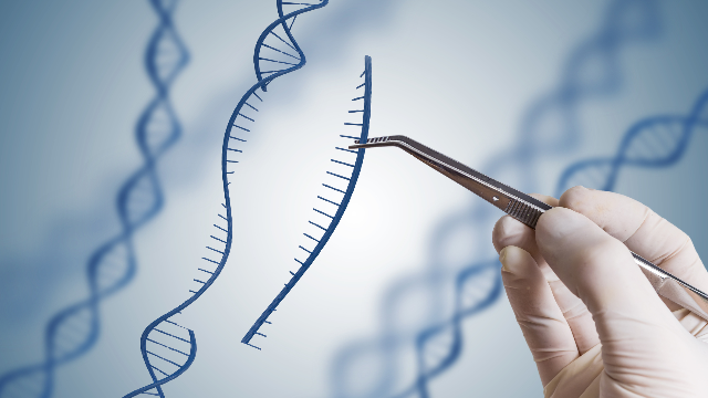 "Bioethics Council Rules Heritable Genome Editing ""Ethically Acceptable"" In Certain Circumstances"