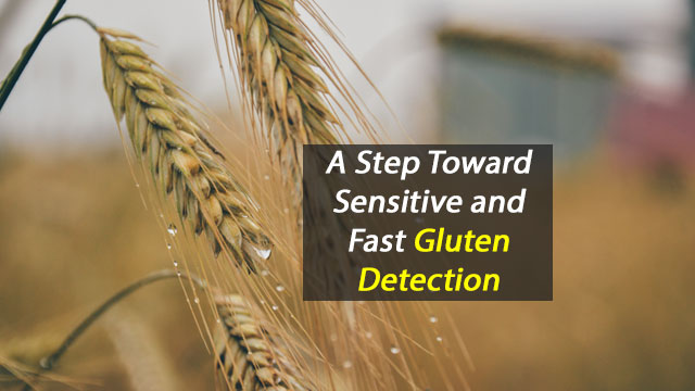 Biosensor Improves Gluten Detection