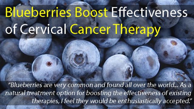 Blueberries Boost Cervical Cancer Therapy