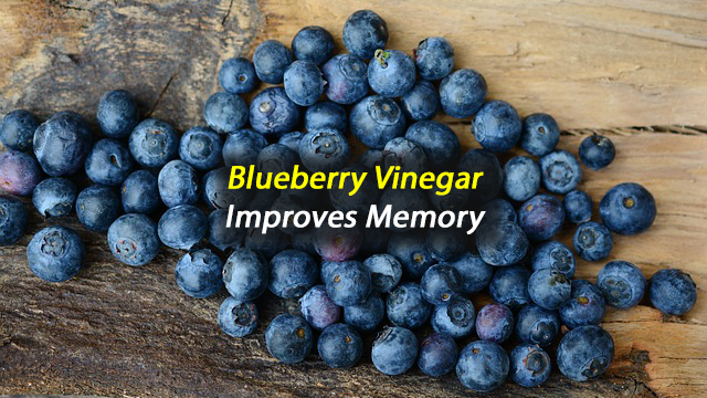 Blueberry Vinegar Improves Memory in Mice with Amnesia