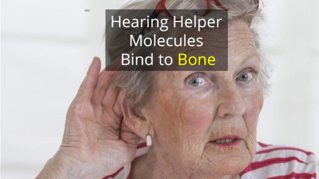 Bone-Bound Biomarkers Could Help Hearing Loss