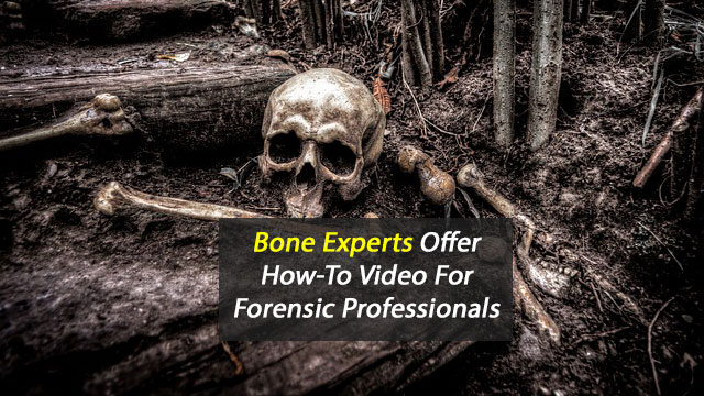 Bone Experts Offer How-To Video For Forensic Professionals