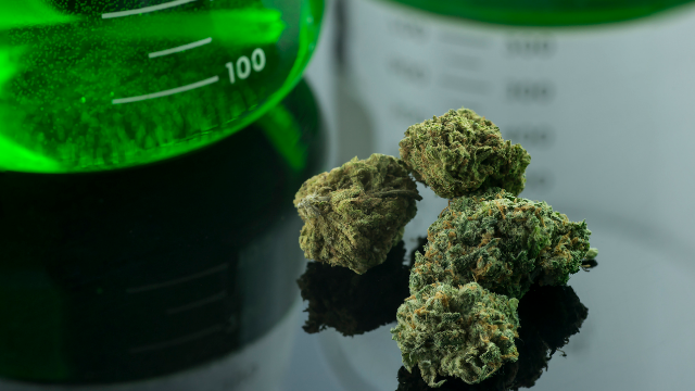California Cannabis Labs Raising the Crest?