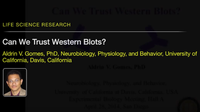 Can We Trust Western Blots?