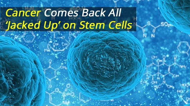 Cancer Comes Back All 'Jacked Up' on Stem Cells