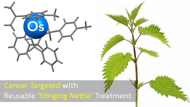 Cancer Fighting Compound Activated by Substance Found in Stinging Nettles
