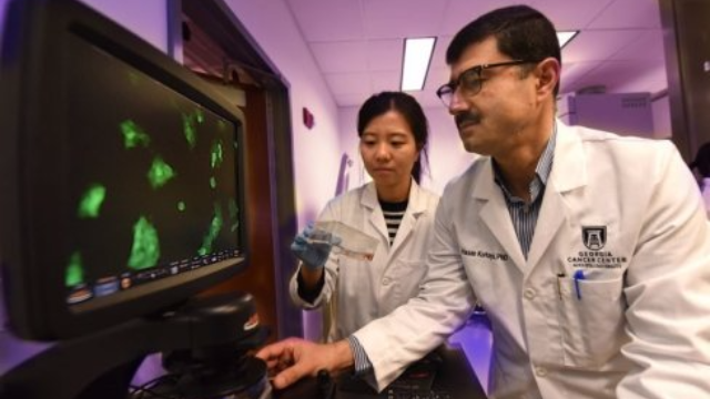 Cancer Hijacks Immature Immune Cells to Aid its Spread
