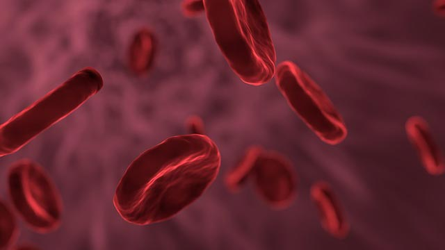 Cancer Regenerating Cells Responsible for Blood Cancer Relapse