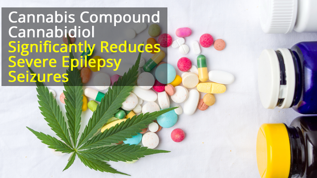 Cannabidiol Significantly Reduces 'Drop Seizures' in Epilepsy Patients