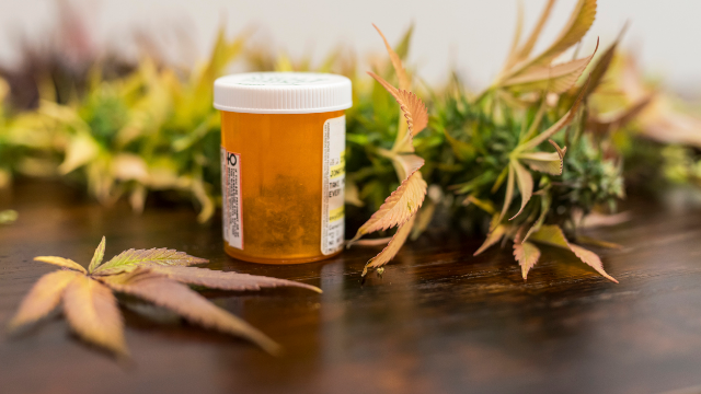 Cannabis Medicine: Providing Patients with the Right Chemical Profile for Their Condition
