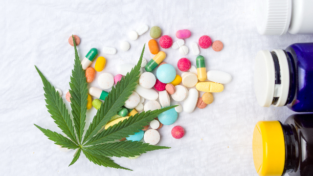Cannabis Therapeutics: The Highs and Lows of Developing Cannabinoid Therapies