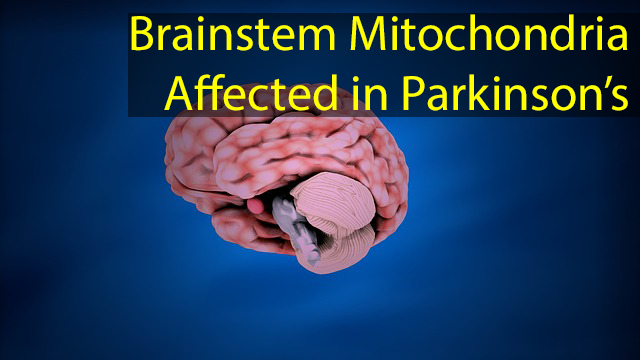 Changes in Brainstem Neurons Mitochondrial DNA Discovered in Parkinson's Disease