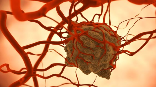 Characterizing the Function of Rare Tumor Cells