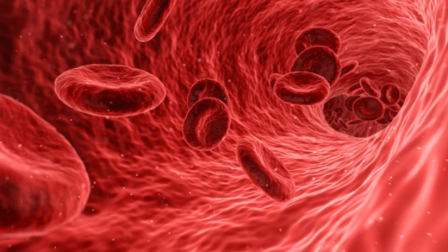 """Climb Aboard! Red-Blood-Cell """"Hitchhikers"""" Offer Way to Transport Drugs to Targets"""