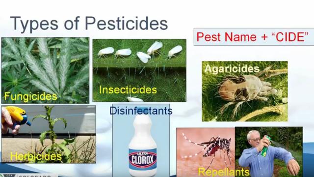 Commercial Cannabis: Pesticides 101