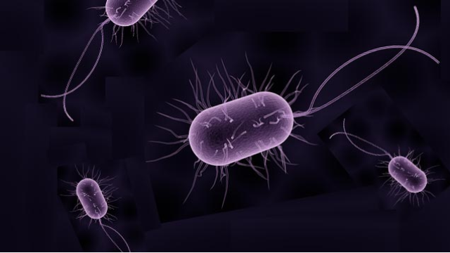 Compound Effective Against Drug-Resistant Pathogens