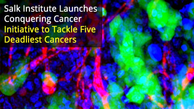 'Conquering Cancer' Initiative Launched