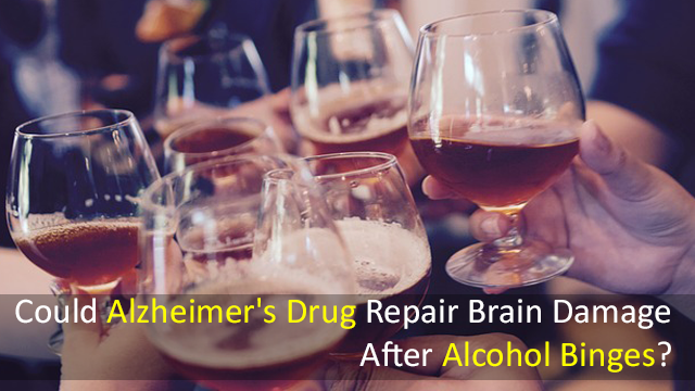 Could Alzheimer's Drug Repair Brain Damage After Alcohol Binges?