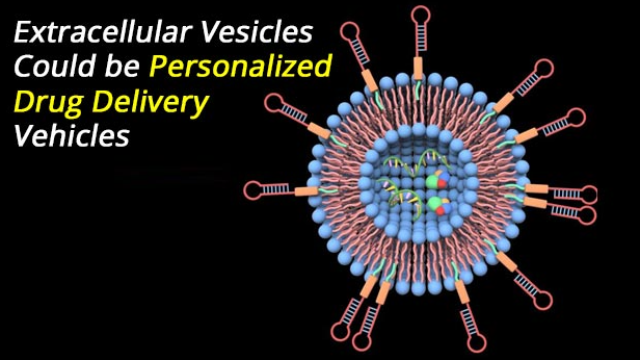 Could Extracellular Vesicles be Personalized Drug Delivery Vehicles?
