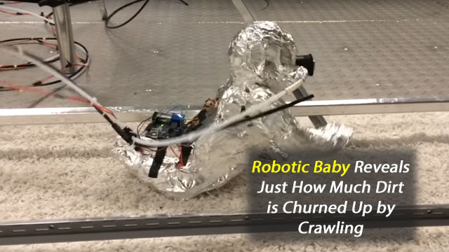 "Crawling Exposes Babies to ""Good"" Dirt"