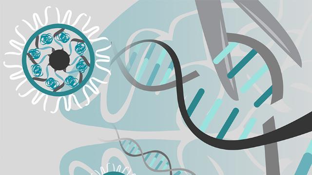 CRISPR-Gold Cuts Down Autism Symptoms in Mice