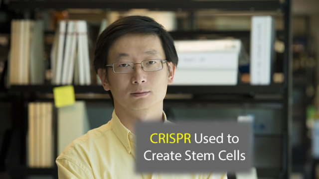 CRISPR Technology Used to Make Stem Cells