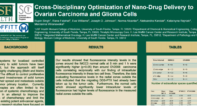 Cross-disciplinary Optimization of Nano-Drug Delivery to Ovarian Carcinoma and Glioma Cells