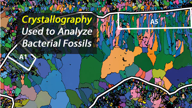 Crystallography Used to Analyse Fossils and Assign them to Microscopic Organisms