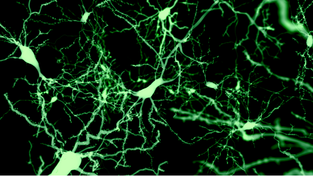 Cutting Edge Tools For Neuroscience Research