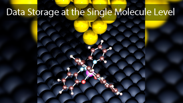 Data Storage at the Single Molecule Level