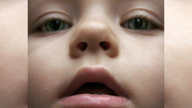 With eyes or noses? How young children use sensory cues to make social decisions