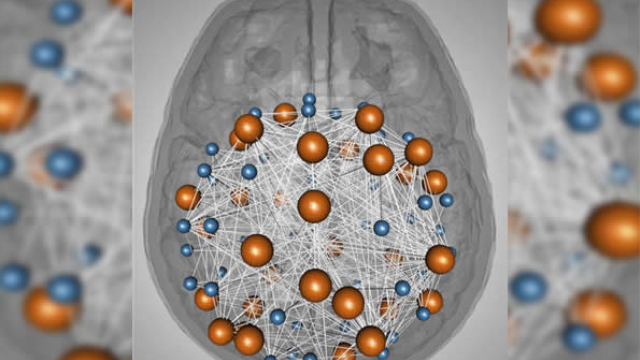 Study finds genetic convergence between cognition and neuro developmental disorders