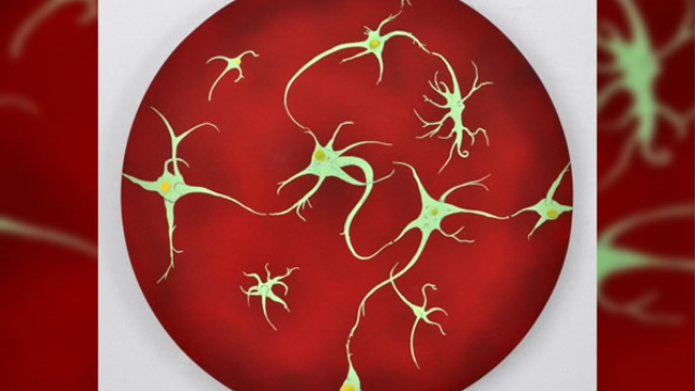 Brain blocks new memory formation on waking to safeguard consolidation of existing memories