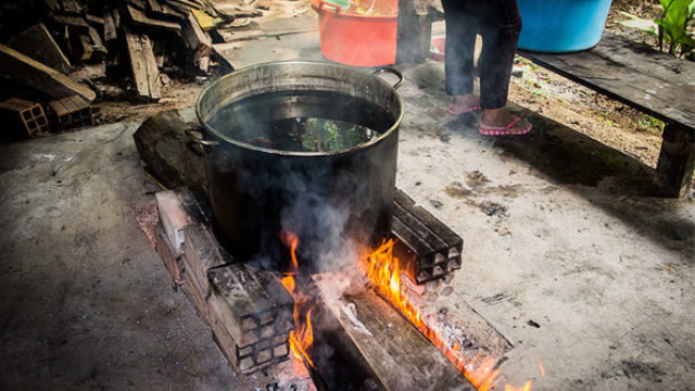 Substance present in ayahuasca brew stimulates generation of human neural cells